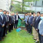 Tree Plantation Program on the occasion of 46th Martyrdom Anniversary of Bangabandhu